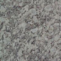 Algardi Granite Countertop 4x4 Sample