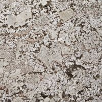 Bianco Antico Granite Countertop 4x4 Sample